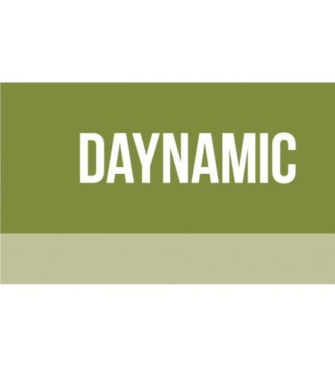 Daynamic