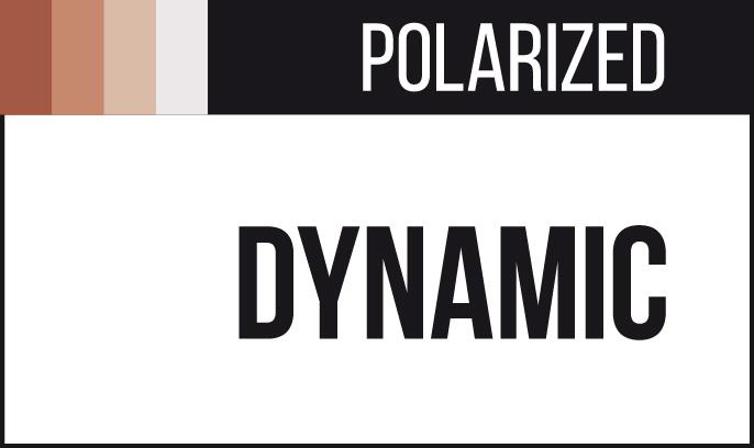 Hoya Polarized